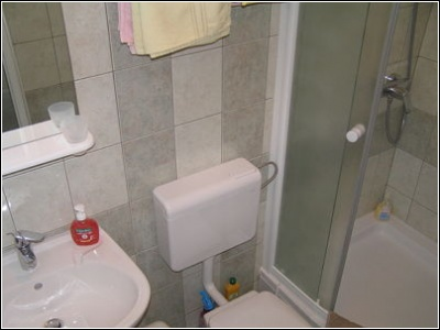 1B bathroom with shower